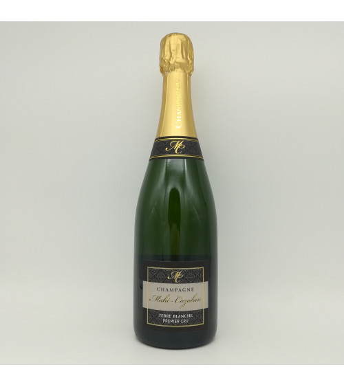 Champagne Mahé-Cazaban Terre Blanche 1erCru